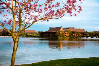 Disney's Polynesian Resort Lake