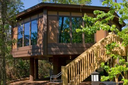 Disney's Saratoga Springs Resort and Spa Treehouse Villa